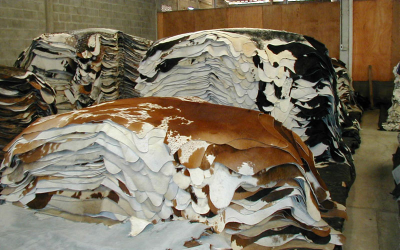RJ-LEATHER-RAW HIDES-4